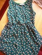 Sukienka w koty