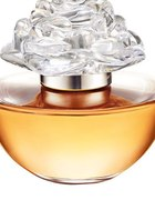 In BLOOM by REESE WITHERSPOON 50ml