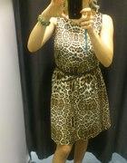 Sukienka w panterkę MOTIVI