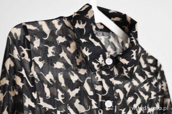 Czarna koszula w koty lub lisy...