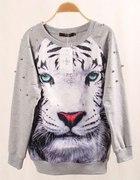 prosze pomożcie wybrac wild ANIMAL tygrys...