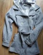 płaszczyk siwy