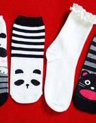 Skarpetki panda kot lolita koty miś uszy