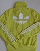 Bluza Adidas cytrynowa żółta...