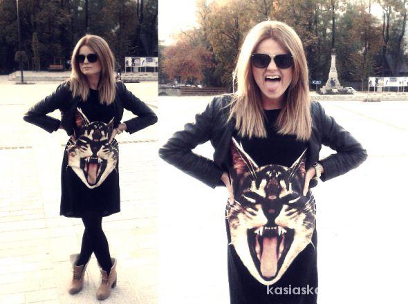 cat lover II