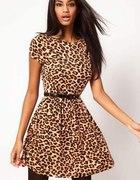 Sukienka lub tunika w panterke...