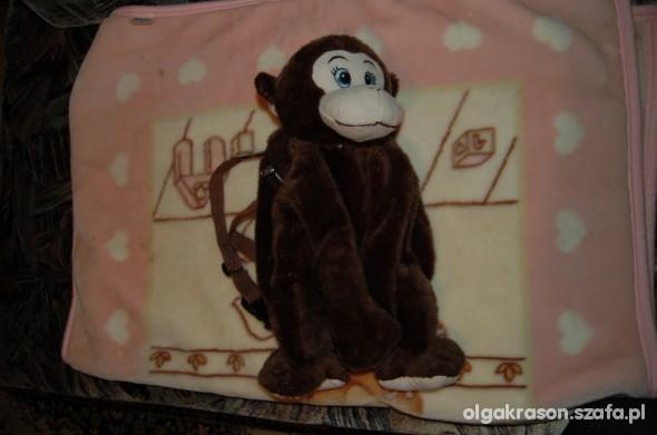 Pozostałe Plecak małpa Primark Home