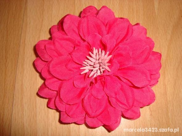 rozowy kwiat