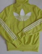 Bluza adidas żółta seledynowa...