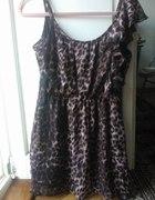 Sukienka panterka rozmiar 38