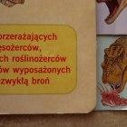Książka Poznajemy dinozaury wyd DEBIT