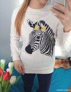 Bluza zebra