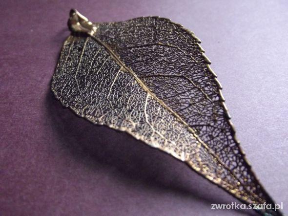 Rdzawy liść