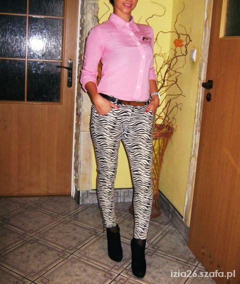 Mój styl Zebra