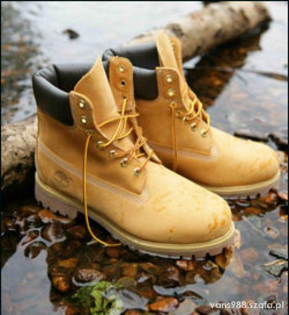 poszukuje butów marki timberland...