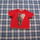 Tshirt 86 Świetny ze Słoniem dla Smyka 12 18 mcy