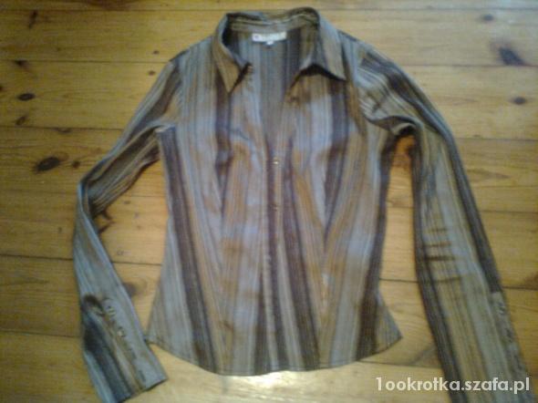 Poszukuję eleganckich koszul bluzek
