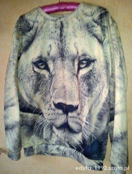 bluzy lew