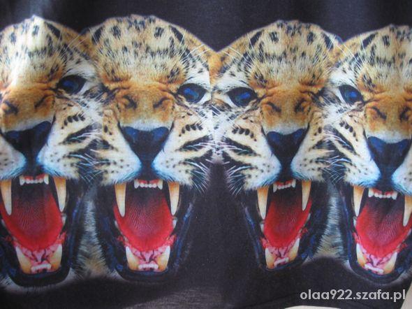 Bluzka z tygrysem XS 34
