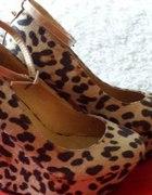 buty na koturnie panterka deezee