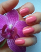 Hybrydowe PINK ROSE