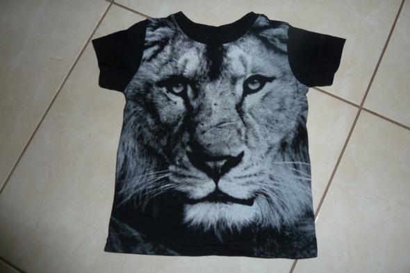 Koszulki, podkoszulki koszulka Lew