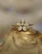 Pandora Pierścionek Srebrny Kwiatuszek