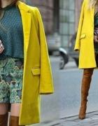 yellow khak green...