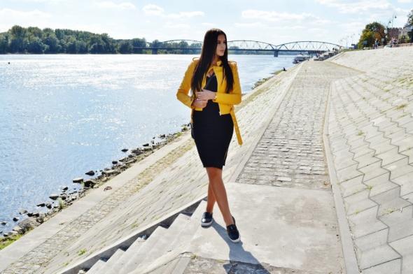 Blogerek zółta ramonska