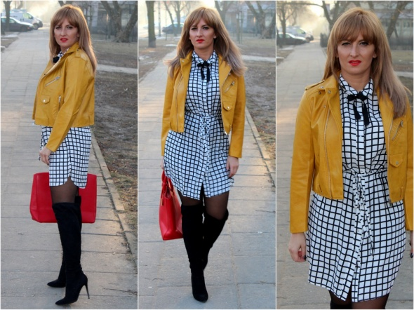 Blogerek Zolta ramoneska