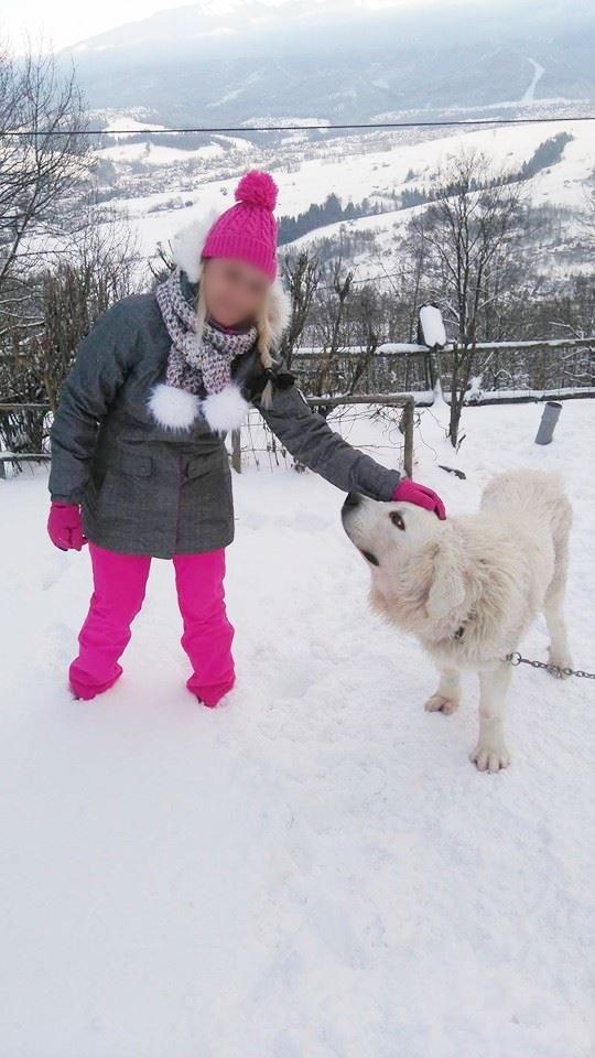 Zimowe...