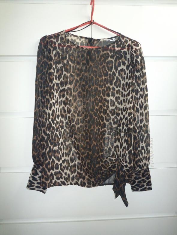 Koszule koszula mgiełka w panterkę animal print new look