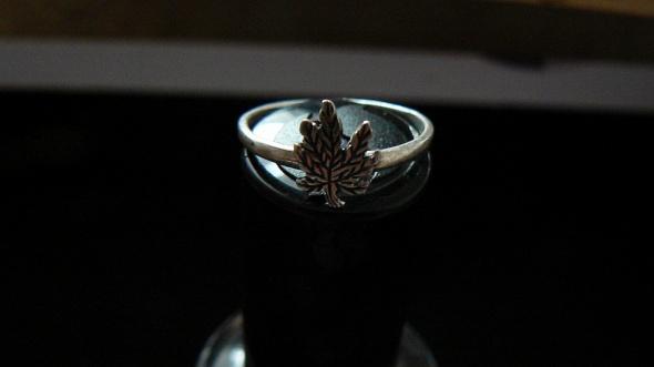 srebrny z liściem