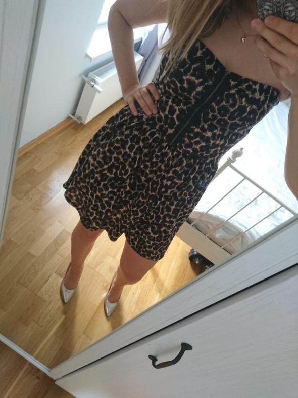 Suknie i sukienki sukienka panterka tally weily
