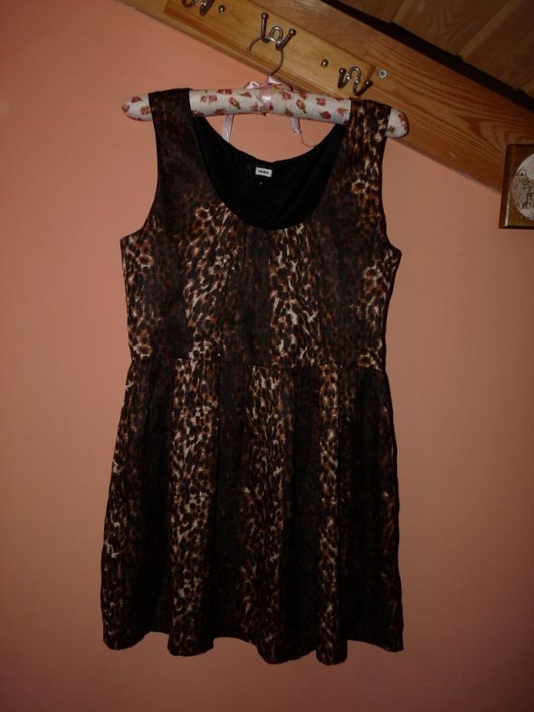 Sukienka panterka guziki...