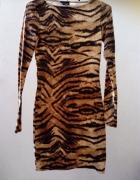 topshop dopasowana sukienka w tygrysi wzór 34 XS...