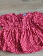 sukienka w kropeczki 62...