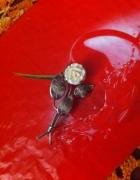 Warmet stara broszka PRL szlachetna róża z kości