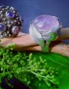 Liliowy wrzos