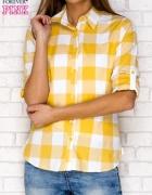 Żółta koszula w kratę z podwijanymi rękawami