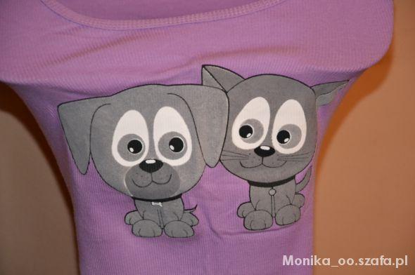 bokserka liliowa pies i kot