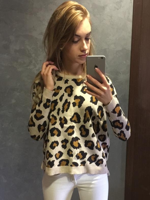 Sweter H&M sweterek zip pantera S 36 lampa