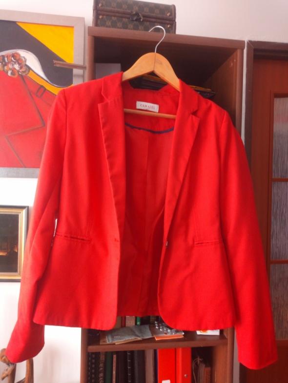 Czerwona marynarka Camaieu...