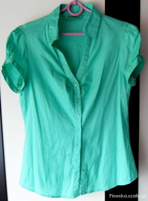 Piękna zielona koszula z krótkim rękawem Terranova
