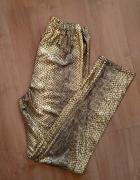 Złote legginsy wzór zwierzęcy skóra węża...