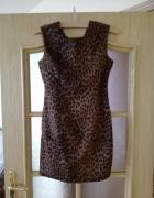 Sukienka Pantera Rozmiar 36