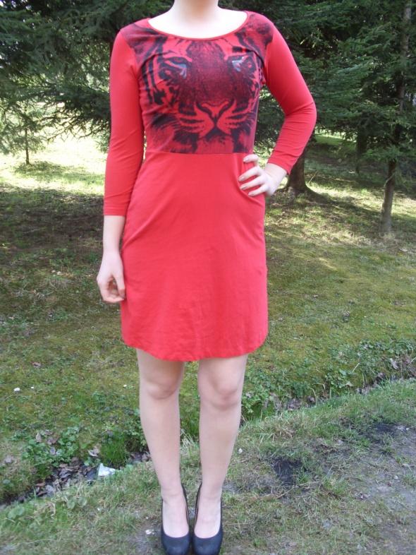 Carry young śliczna czerwona sukienka wzór print s...