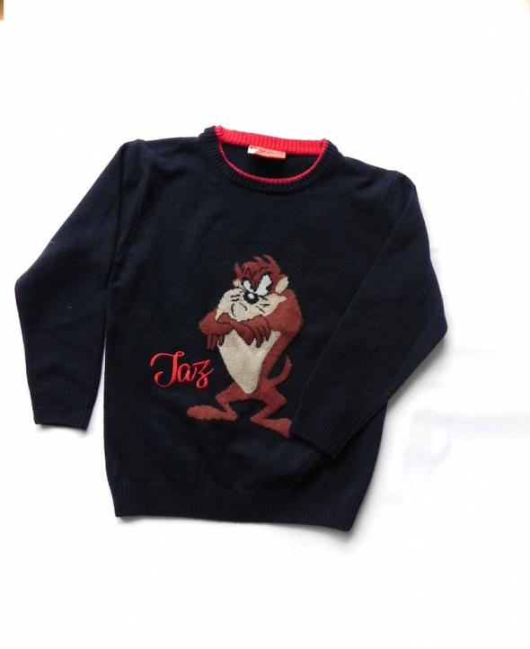 Taz Warner Bross wełniany sweter z diabłem tasmańskim 4 5 lat