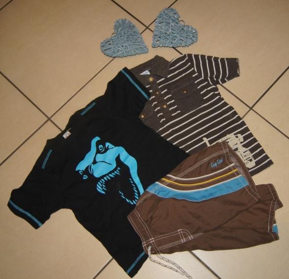 Zestaw chłopiec koszulki spodenki dinozaur roz 104