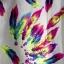koszulka mgiełka w kolorowe pióra...